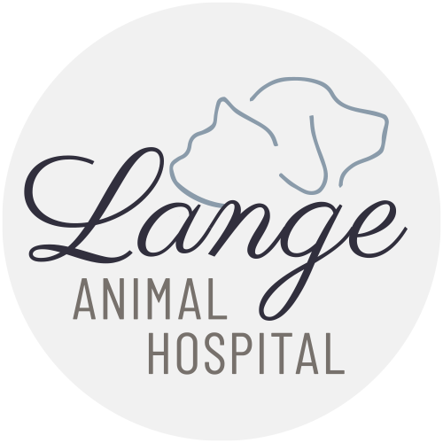 lange_logo_website_2